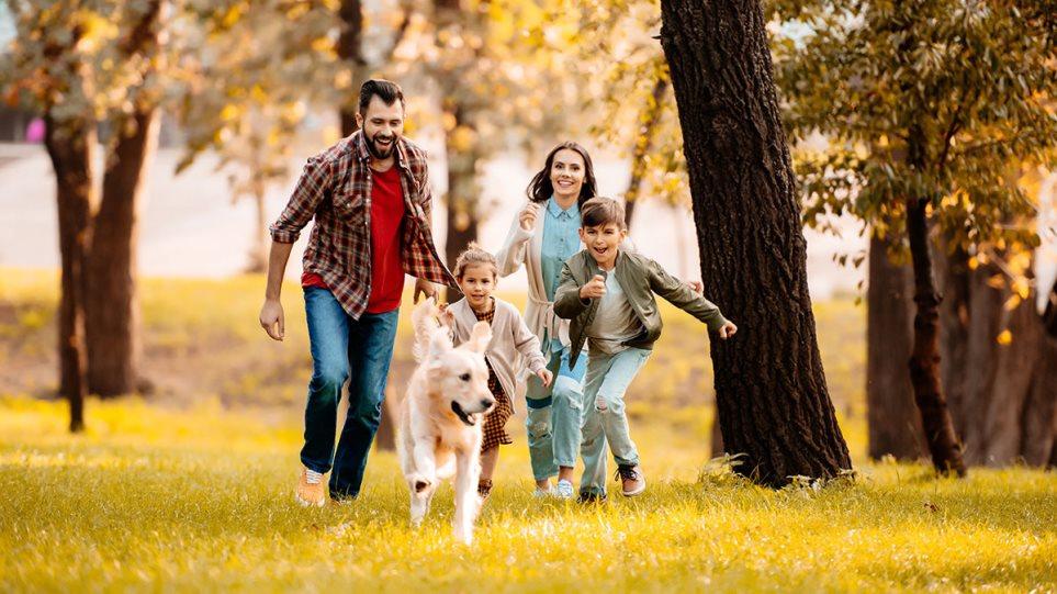 200801112641_dogfamily1
