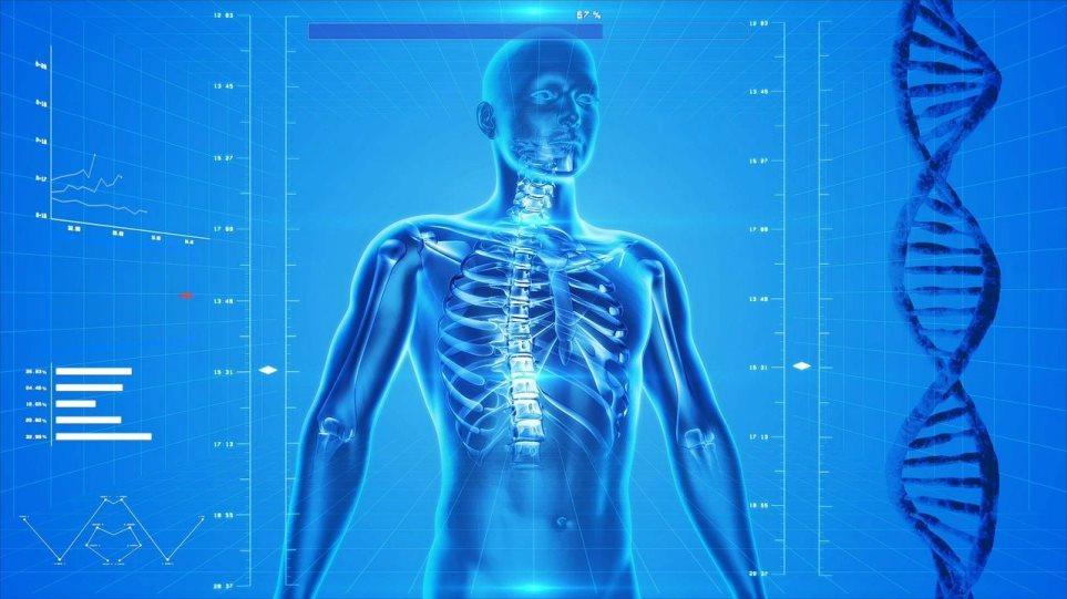 osteostrong_ostiki_piknotita_human-skeleton