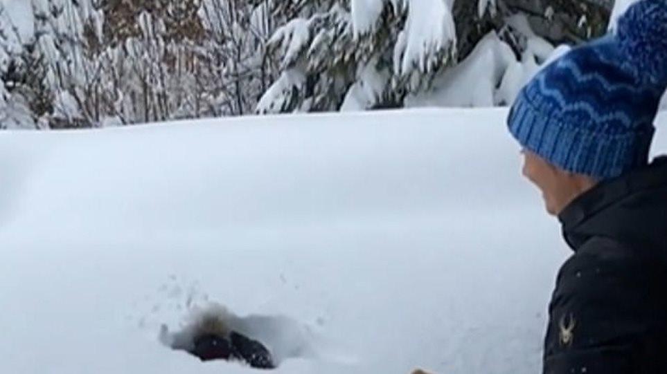 xionia-skier
