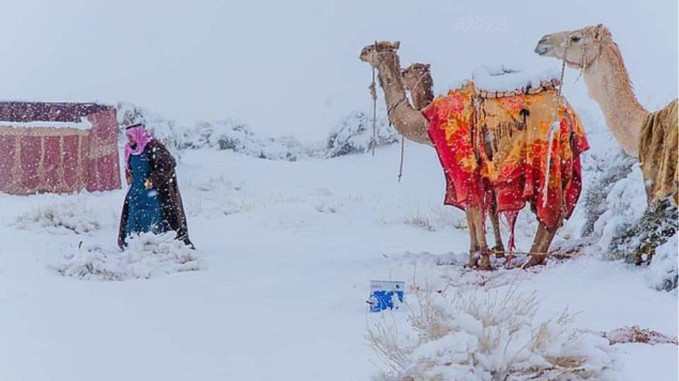 Και ο καιρός τρελάθηκε: Χιόνισε στη Σαχάρα - Στους -2 βαθμούς η θερμοκρασία  στη Σαουδική Αραβία