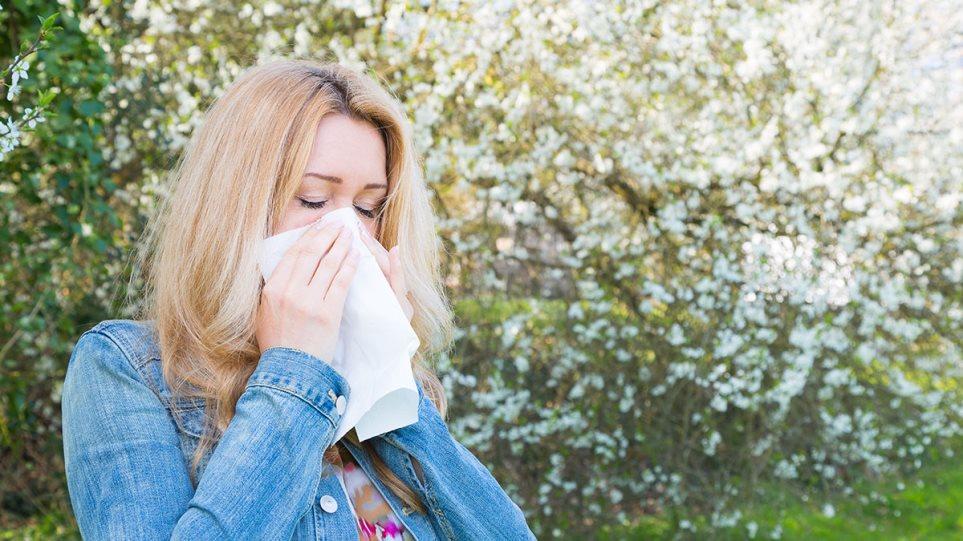 190308152705_allergies