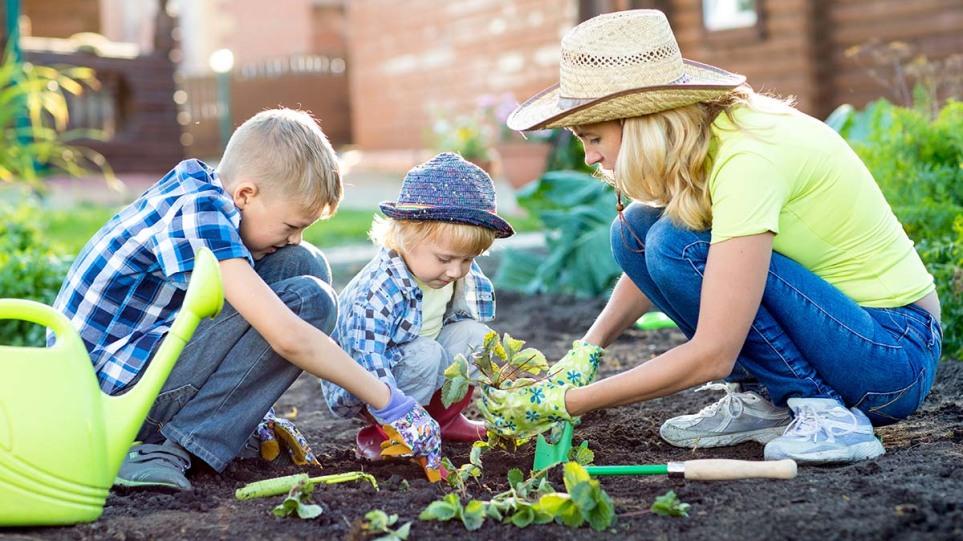 210618150806_gardening__1_