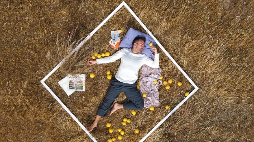 Lemon_-_parastasi