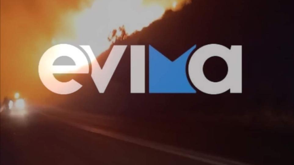 Εύβοια: Μεγάλη φωτιά στον Φηγιά - Εκκενώθηκαν δύο οικισμοί