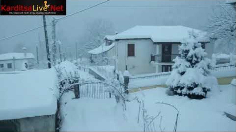 """Κακοκαιρία """"Μήδεια"""": Χιονόπτωση στο Πευκόφυτο Καρδίτσας (14/2/2021)"""