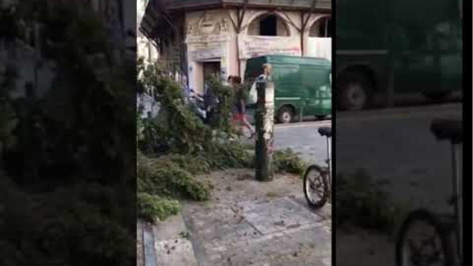 Βίντεο : Ο «Ξενοφών» ξεριζώνει...  δέντρα στο Μοναστηράκι!