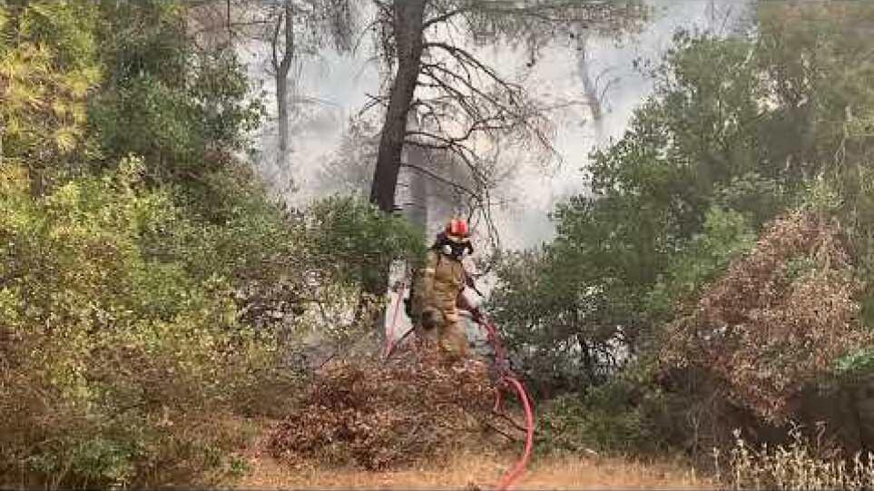 Φωτό πυροσβέστες μέσα στο δάσος