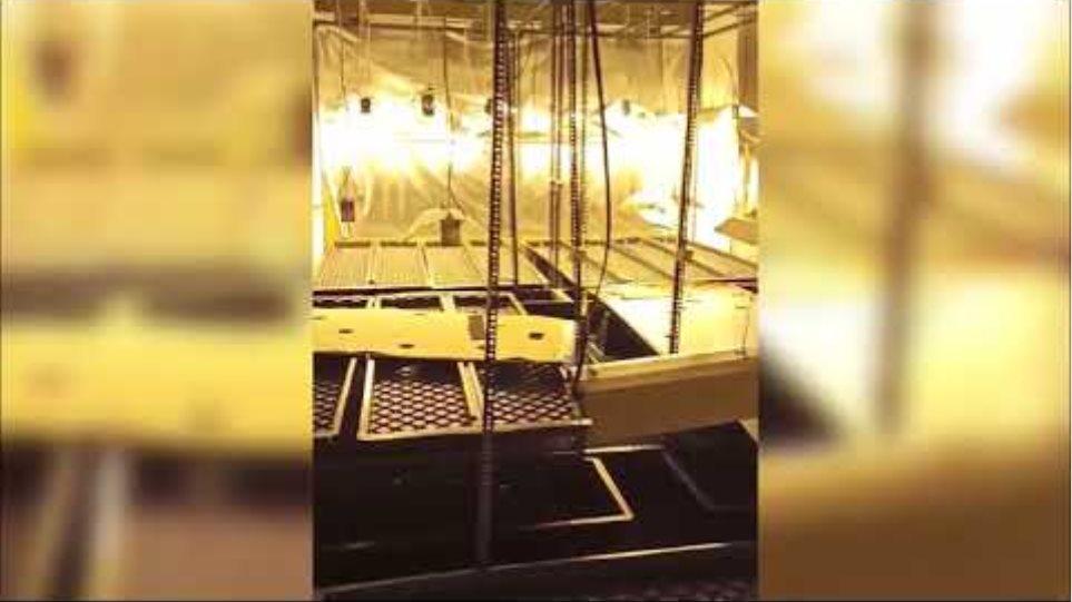 Εργαστήριο υδροπονικής καλλιέργειας