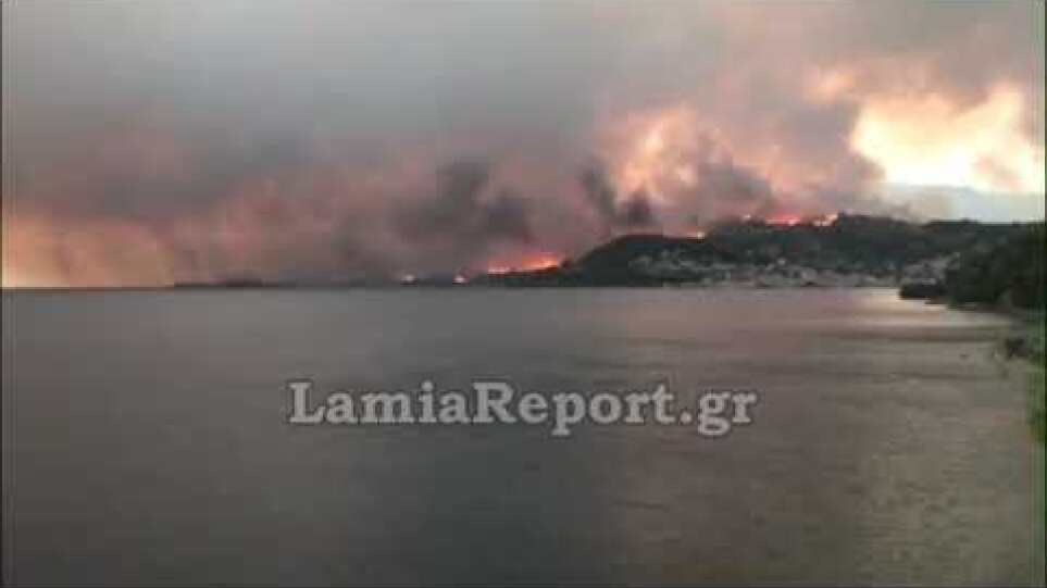 LamiaReport.gr: Μεγάλη πυρκαγιά στη Λίμνη Ευβοίας