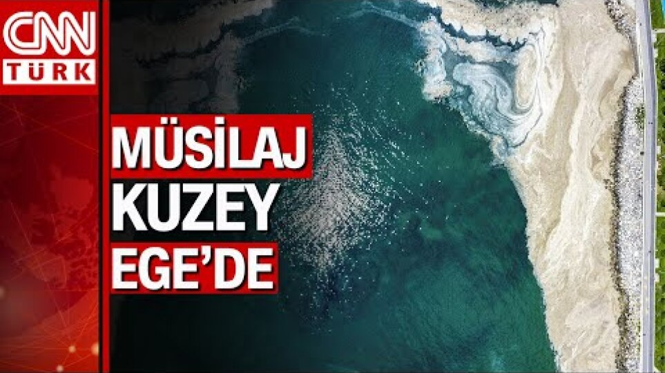 Korkulan oldu deniz salyası (müsilaj) Bozcaada'ya ulaştı...