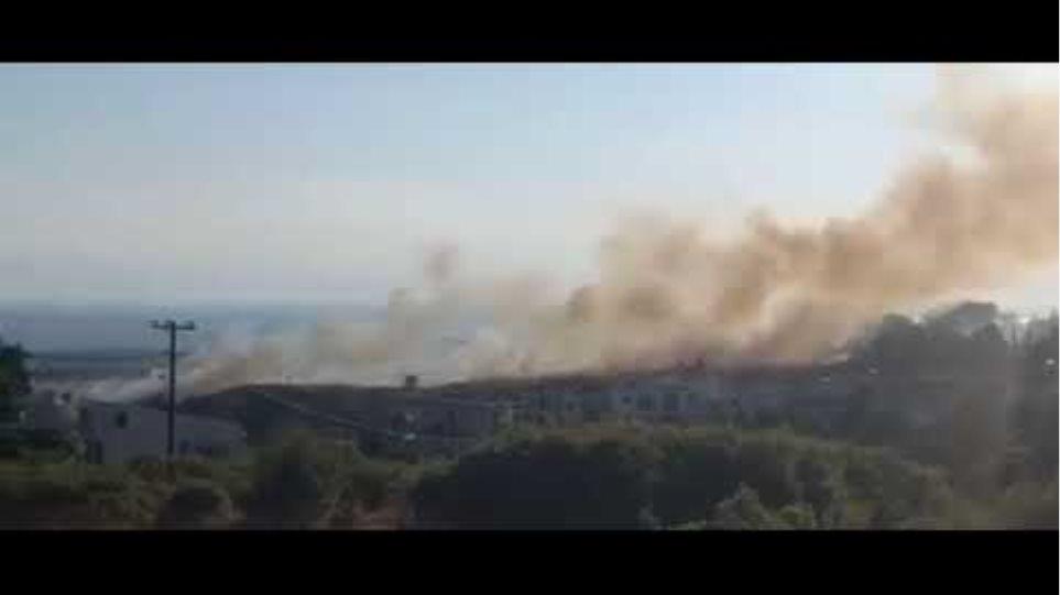 Thestival.gr Φωτιά στο Πανόραμα