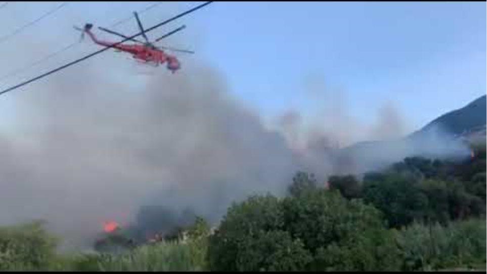 INKEFALONIA.GR :Πυροσβεστικό ελικόπτερο Τύπου Ερικσον επιχειρή στον Λουρδά