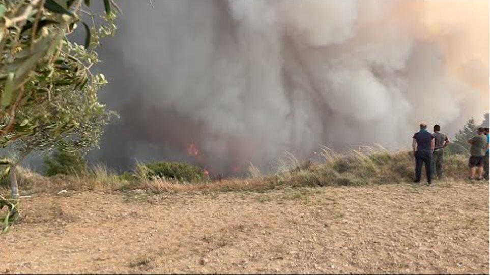 Μεγάλη φωτιά στον οικισμό Κοκκιναρέα- Στις αυλές σπιτιών η πυρκαγιά