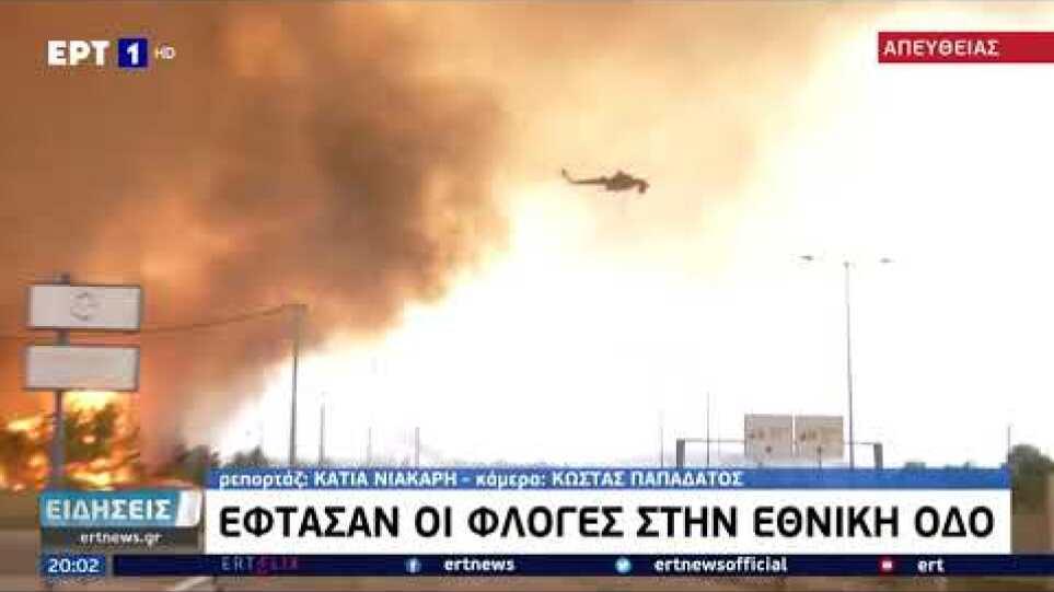 Η φωτιά έφτασε στα διόδια Αφιδνών