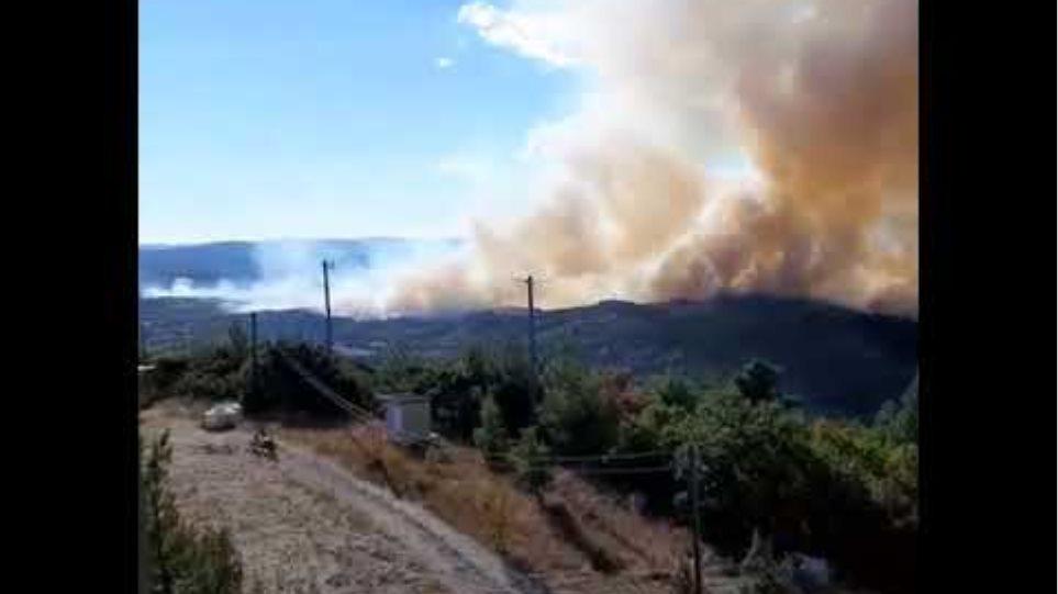 (20:00) Δυστυχώς η φωτιά ξέφυγε και είναι εκτός ελέγχου στη Λευκίμη