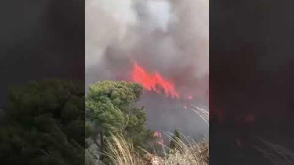 Φωτιά στον οικισμό Κοκκιναρέα