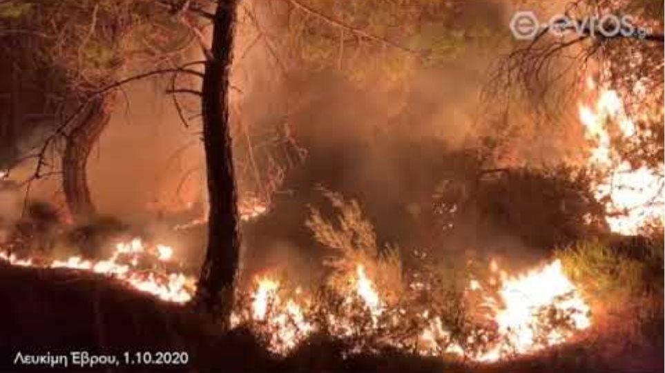(23:50): Συγκλονιστικά στιγμιότυπα από τις παρυφές του πυρήνα της φωτιάς!