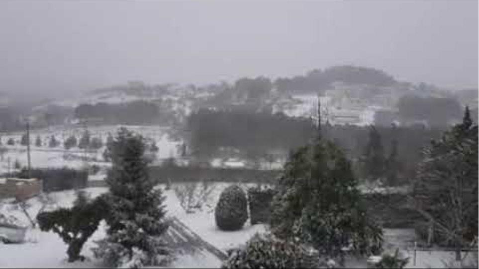 HALKIDIKINEWS - Πολυγύρος χιόνια 16-1-21