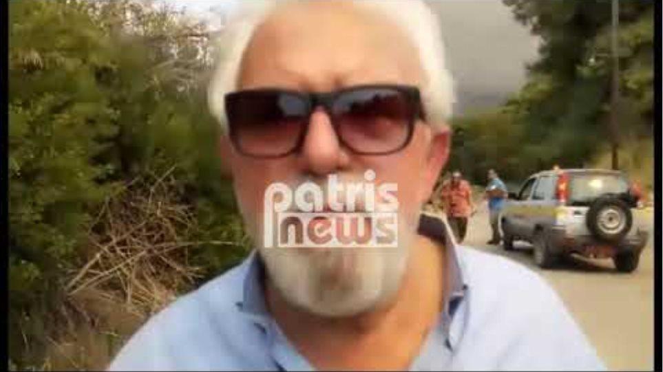 Αμαλιάδα: Μεγάλη πυρκαγιά σε εξέλιξη στη Δαφνιώτισσα - Εκκενώθηκαν σπίτια (PHOTOS)