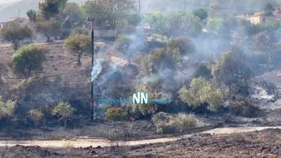 Πύρινη κόλαση στην  Ελαία Φωκίδας - Πρώτες Αποκλειστικές εικόνες -Καίγονται σπίτια