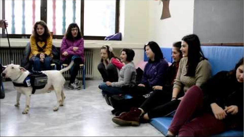 ΠΑΙ.ΖΩ  - Θεραπεία με τη Βοήθεια Ζώων , 1ο μέρος !