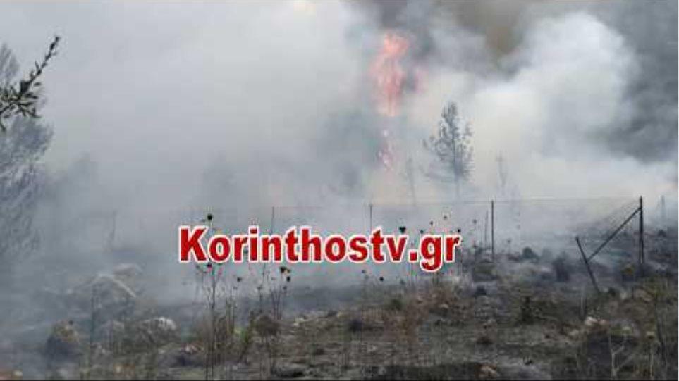 Φωτιά Κεχριές: Κοντά στο στρατόπεδο η φωτιά