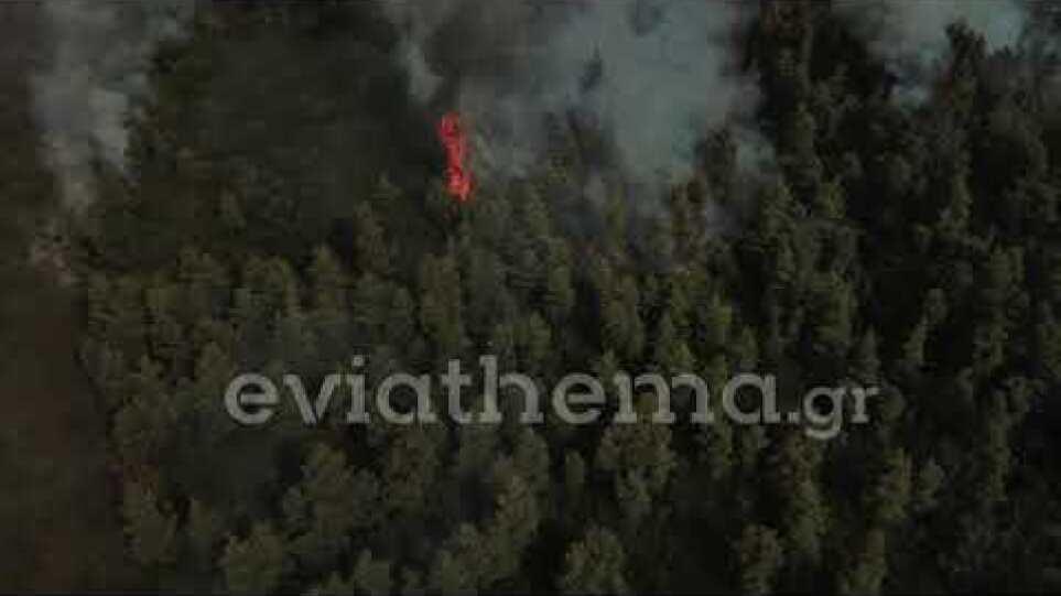 Eviathema.gr - Φωτιά στην Βόρεια Εύβοια
