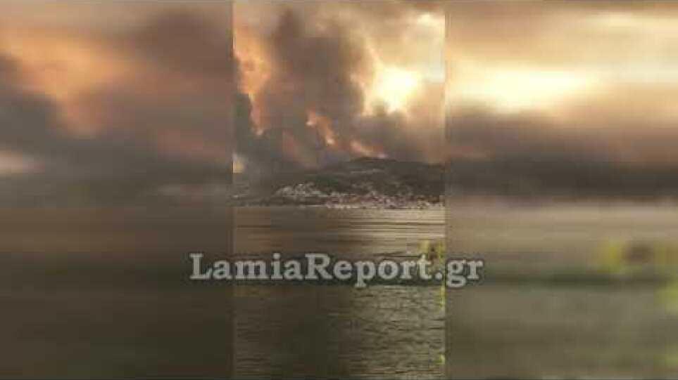 LamiaReport.gr: Μεγάλη φωτιά στη Λίμνη Ευβοίας