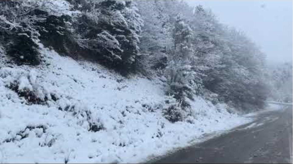Χιόνια στη Στενή Ευβοίας