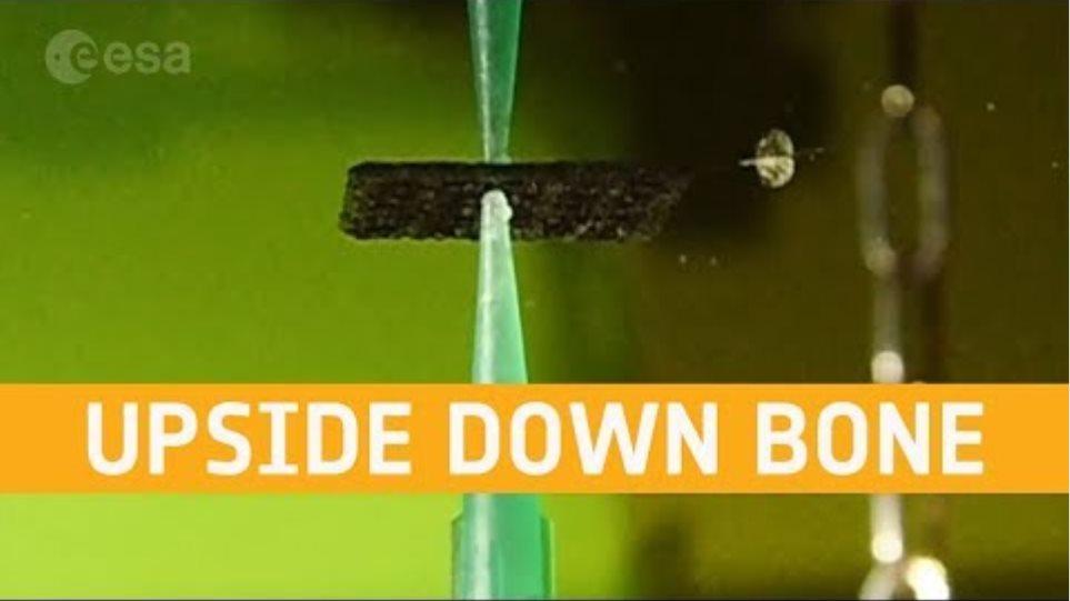 3D printing bone upside down