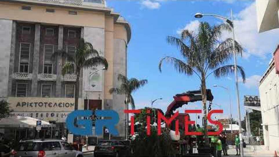 """""""Μαϊάμι"""" η οδός Εθνικής Αμύνης για την ταινία του Α. Μπαντέρας"""