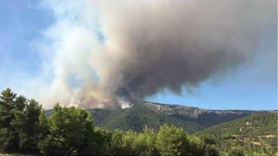 Η φωτιά από το χωριό Πλατάνα