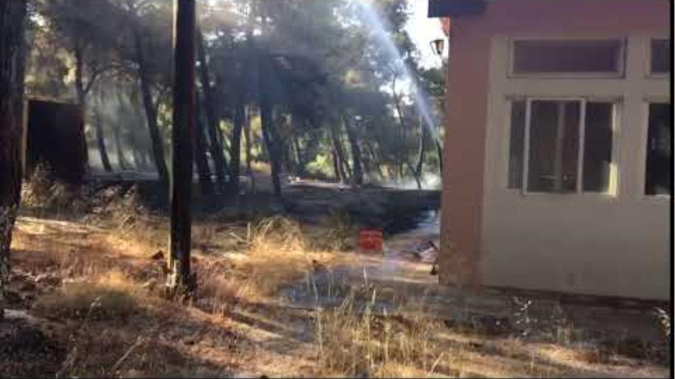 Έσβησε η φωτιά Ζούμπερι