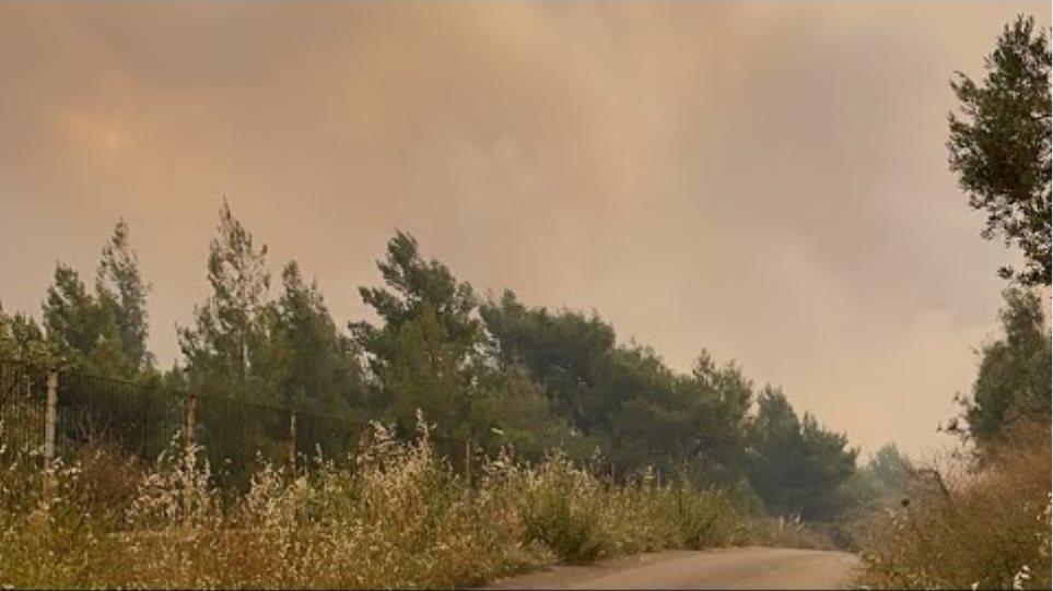 Πλησιάζει τα σπίτια η φωτιά στον οικισμό Πευκενέα