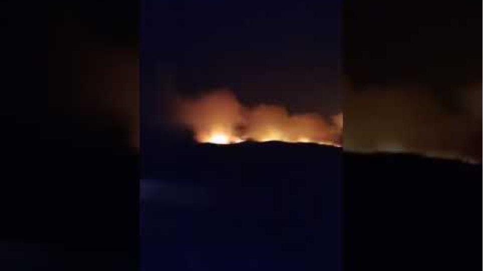 Απίστευτο βίντεο μαρτυρά το μέγεθος του μετώπου της πυρκαγιάς στη Νίψα.