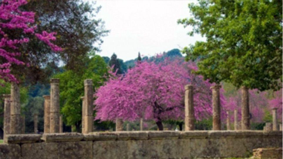 Το ΚΑΣ είπε «ναι» στον βοτανικό κήπο της Αρχαίας Ολυμπίας