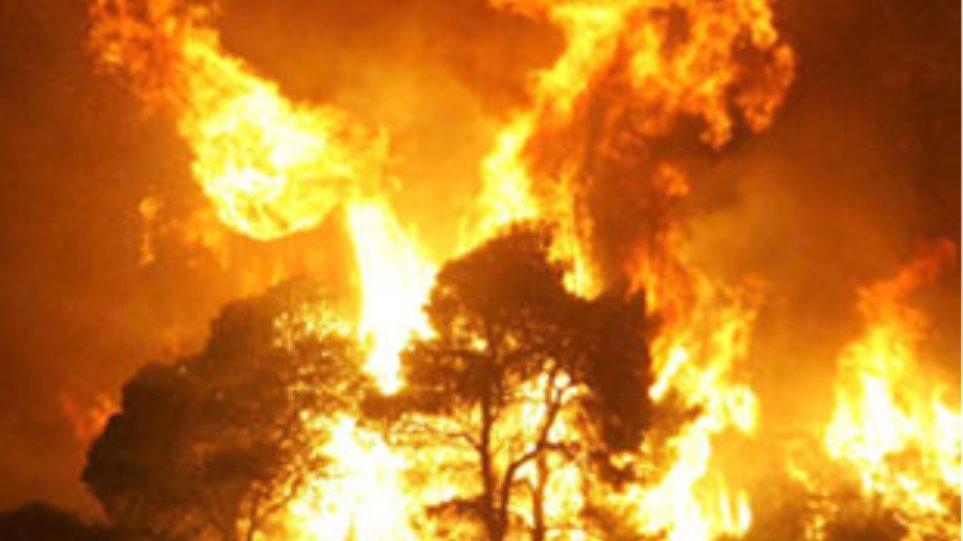 Μεγάλη πυρκαγιά στη Ζακύνθο