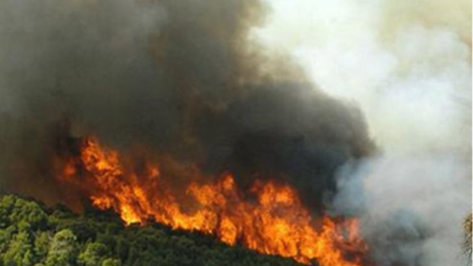 Πυρκαγιά σε δασική περιοχή της Ρόδου