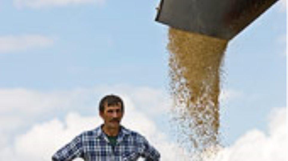Πέντε εκατομμύρια τόνους σιτηρών ενδέχεται να εισάγει η Ρωσία