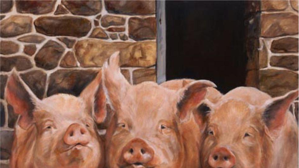 Απολογία Μπόσι για το χαρακτηρισμό «γουρούνια»