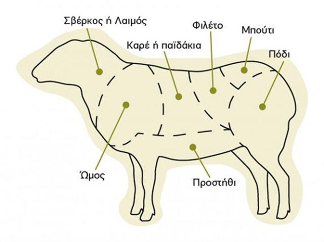Όλα όσα πρέπει να ξέρεις για το πασχαλινό αρνάκι και κατσικάκι