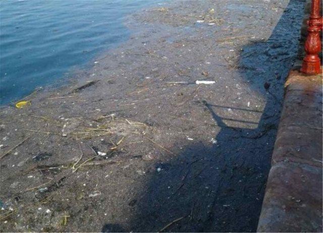 Φωτογραφίες: Γεμάτος φυτοπλαγκτόν και σκουπίδια ο Θερμαϊκός