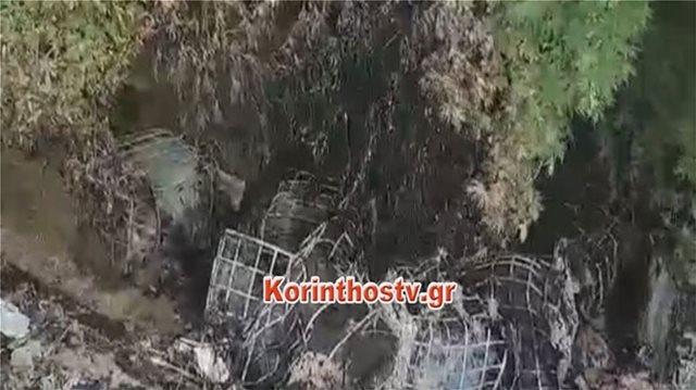 Περιβαλλοντικό έγκλημα στη Νεμέα: Έριξαν 12 δεξαμενές με λάδι σε ρέμα