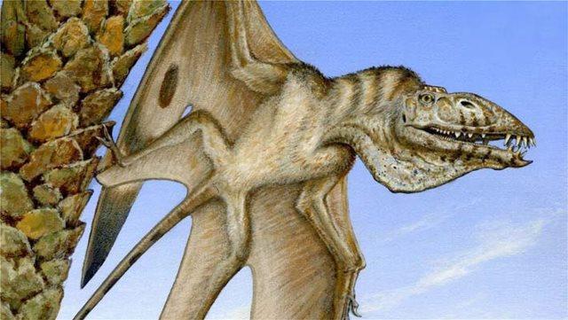 Ανακαλύφθηκε νέος πτερόσαυρος με δόντια «καρφιά» και κεφάλι σαν του πελεκάνου