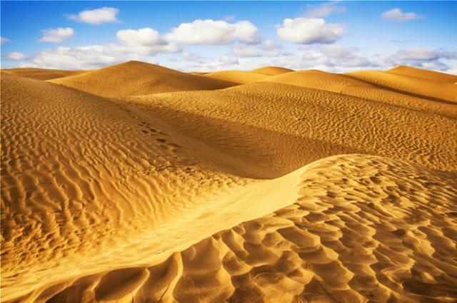 Ερευνητές θέλουν να «πρασινίσουν» την έρημο Σαχάρα