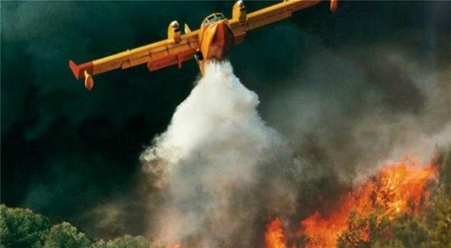 Φωτιά σε ελαιόδεντρα στη Λέσβο - Υπό μερικό έλεγχο η πυρκαγιά στο Ρέθυμνο