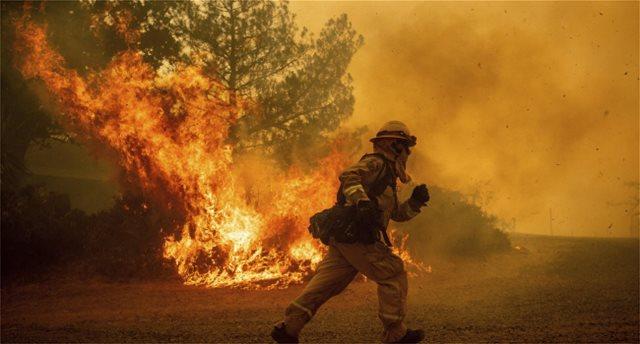 Στο έλεος πυρκαγιάς η Νέα Ζηλανδία: Καίει επί μία εβδομάδα
