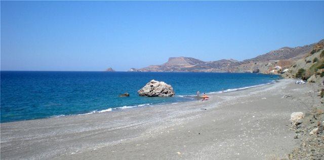 Κρήτη: Νεκρό δελφίνι «ξέβρασε» η θάλασσα σε παραλία