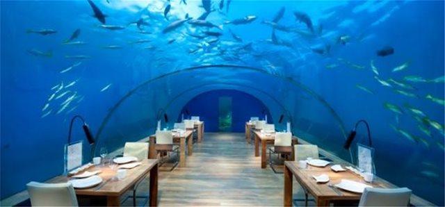 Δείπνο στο βυθό της θάλασσας