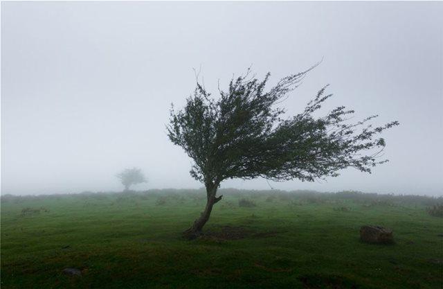 Meteo: Μας πήρε και μας... σήκωσε ο καιρός αυτόν τον χειμώνα - Με έντονους ανέμους οι περασμένοι μήνες